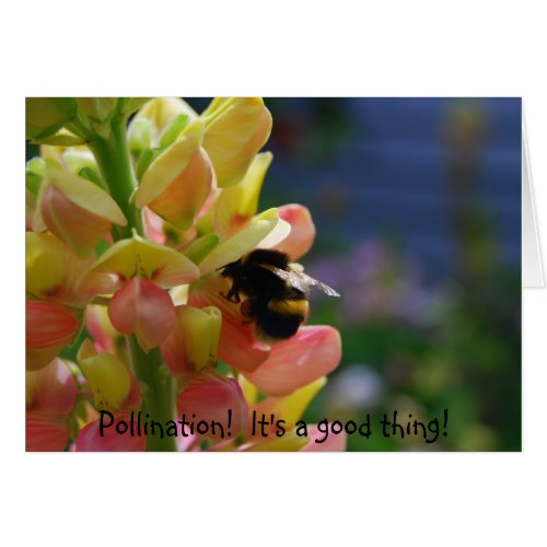 Pollination! It's a good thing! Let's Pollinate! card
