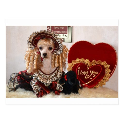 Poodle Valentine Love Dog Victorian Picture Postcard Zazzle