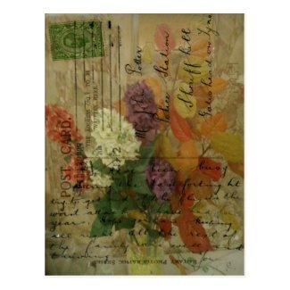Postcard Blooms