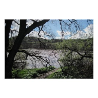 Poster of Salinas River in Paso Robles print