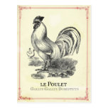 Vintage French Poulet Chicken Postcard