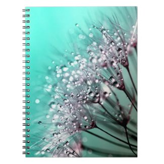 Pretty Aqua Dandelion Seed Water Droplet Notebook