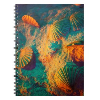 Pretty Colorful Seashells Notebook