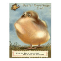 Puffball Fluffy Easter Chick Butterfly Postcard
