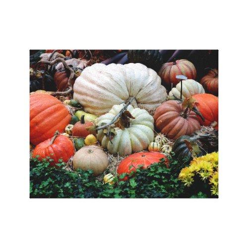 Pumpkin Patch Harvest Canvas Print