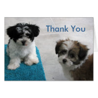 Puppy Sitting Thank You Card