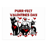 Purr-fect Valentines Day Postcard