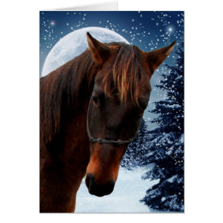 Horse Christmas Cards Greeting Amp Photo Cards Zazzle