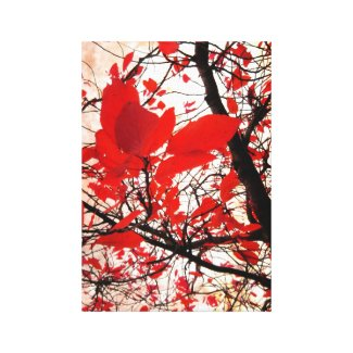 Red leaves wrappedcanvas