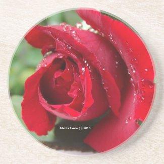Red Rose Dew - Coaster coaster