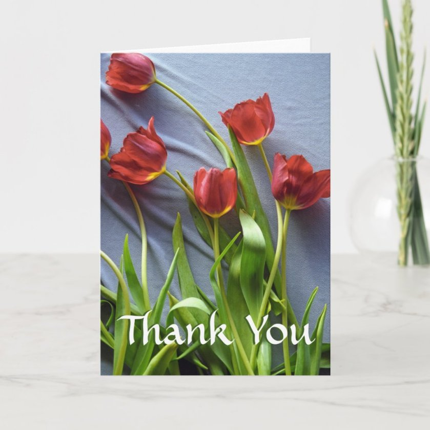 Red Tulips Custom Thank You Greeting Cards