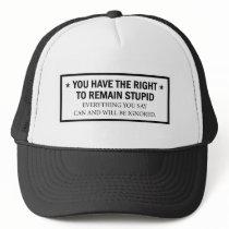 stupid hat 2