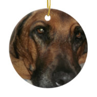 Rhodesian Ridgeback Christmas Tree Ornaments