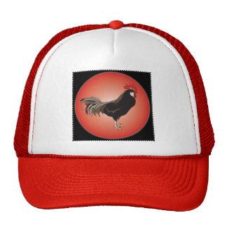 Rooster Showcase Trucker Hats