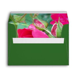 Rose Bud with Water Droplet Envelope envelope