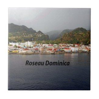 Roseau Dominica Tiles