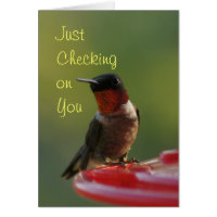 Ruby Throated Hummingbird - customize Card