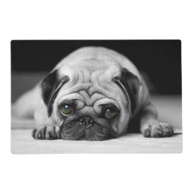 Sad Pug Laminated Placemat