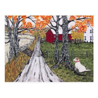 Sadie The Farm Dog Postcard
