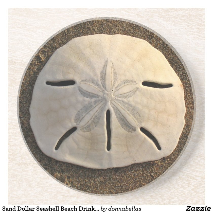 Sand Dollar Seashell Beach Drink Coaster