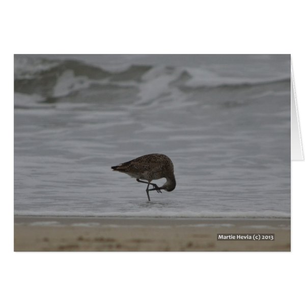 Sandpiper Bows Card