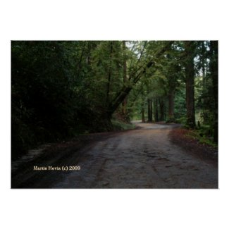 Santa Cruz Mountain Road Print - Select Your Frame print
