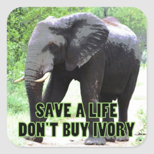 Save a Life, Don't Buy Ivory