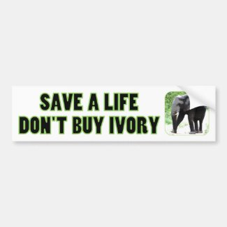 Save an Elephant's Life, Don't Buy Ivory Car Bumper Sticker