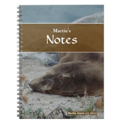 Sea Lion Notebook