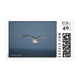 Seagull Leaves Postage Stamp