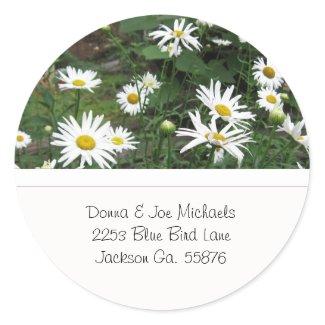 Shasta Daisies Address Stickers sticker
