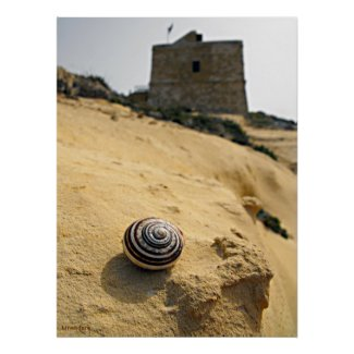 Shell and Tower, Gozo print