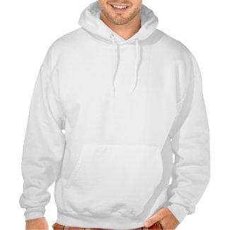 Silver Edison Hoodie shirt