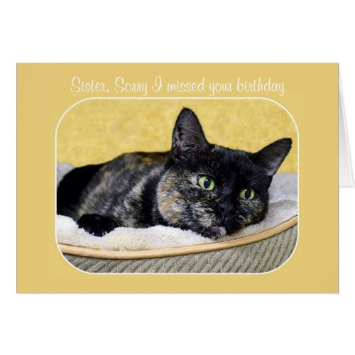 Sister, Belated Birthday Tortoiseshell Cat Greeting Card