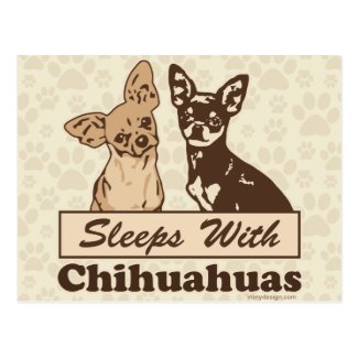 Sleeps With Chihuahuas Post Cards