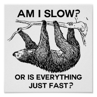 Sloth Am I Slow? Funny Saying Poster