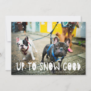 Snow Good | Pet Holiday Photo Card
