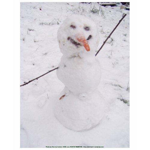 snowman pizazz! shirt