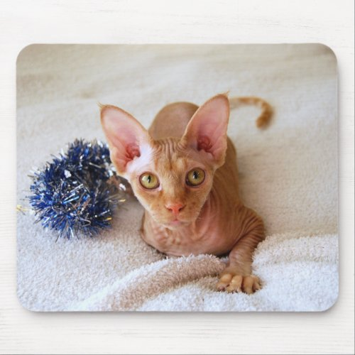 Sphinx Cat with Blue Tinsel Mousepad