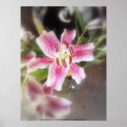 stargazer lilies #11 print