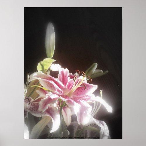 stargazer lilies #23, print