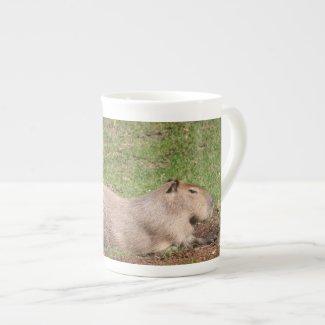 Sunbathing Capybara Porcelain Mug