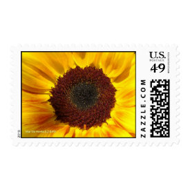 Sunflower Sun - Postage