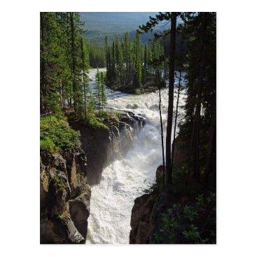 Sunwapta Falls Jasper Canada Landscape Postcard