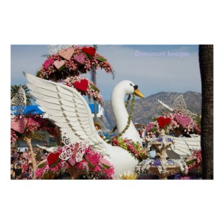 Swan Float , Dominant Images Posters