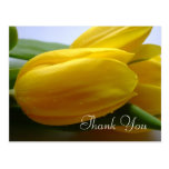 Pretty Yellow Tulip Memorial Funeral Thank You Postcard