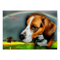 Sympathy - Loss of Pet Dog Card