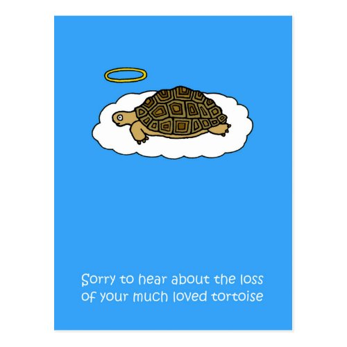 Sympathy on loss of pet tortoise. postcard