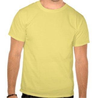 sysadmin logo t-shirt clean windows