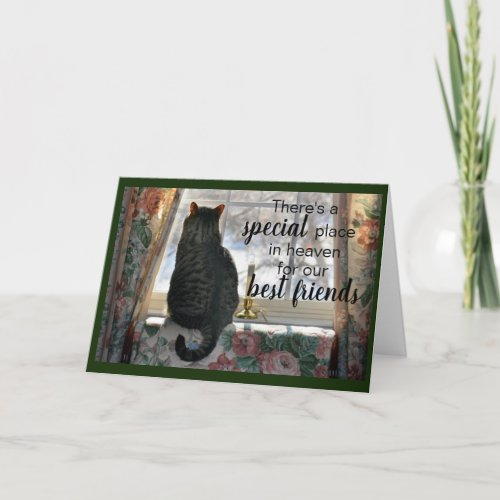 Tabby Cat at Window Sympathy Card